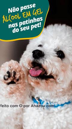 Deu um passeio com seu pet na rua e quer higienizar as patinhas antes de deixá-lo entrar dentro de casa? Evite usar álcool em gel, pois isso pode ressecá-las. O correto é lavá-las com água e sabão próprio ou passar lenço umedecido!   #AhazouPet #dicapet #pets #cachorro #gato # #vetpet