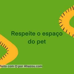 Confira aqui ótimas dicas para deixar seu pet confortável nas festas de fim de ano. #AhazouPet #carrosselahz #cats #petlovers #petsofinstagram #ilovepets #dogs #petoftheday  #AhazouPet