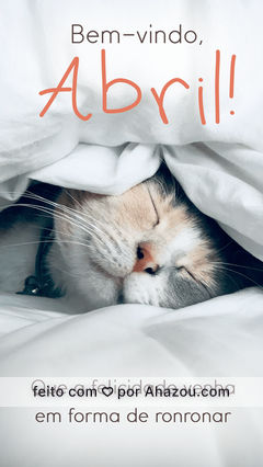 Que seu gatinho te dê bom dia ronronando todos os dias ?? #AhazouPet #cats #petlovers #petsofinstagram #bemvindo #abril #motivacional #AhazouPet #AhazouPet