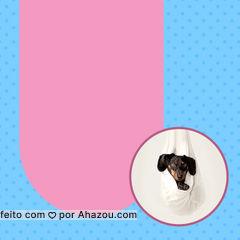 Não se preocupe, amanhã voltamos com tudo! #AhazouPet #folga  #cats  #dogsofinstagram  #ilovepets  #petlovers  #dogs  #petoftheday