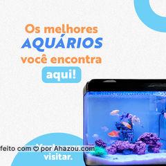 Aqui você encontra o aquário ideal para seu peixinho! Venha conferir! #petshoponline #petshop #delivery #AhazouPet #produtos #acessorios #brinquedos #alimentaçao #petlovers