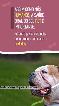 Não pense que a saúde bucal do seu pet não merece toda atenção. Uma boa dentição é sinal de bem-estar e bons cuidados. De atenção aos dentinhos do seu pet. #pet #saúdeoralpet #AhazouPet  #veterinario
