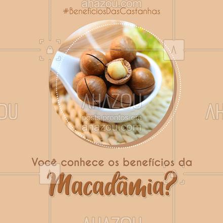 A macadâmia é uma planta nativa da Austrália, mas já está ficando bem conhecida na mesa dos brasileiros. Ela é fonte de vitamina B1, B5, B6, selênio e gorduras monoinsaturadas. Devido aos antioxidantes, ela ajuda a combater os radicais livres e auxilia no rejuvenescimento da pele. O consumo frequente da macadâmia ajuda também à diminuir o risco de doenças cardíacas, os níveis do mau colesterol e triglicérides. #beneficiosdascastanhas #macadamia #AhazouSaude #bemestar #nutricao #alimentacaosaudavel #saude #viverbem
