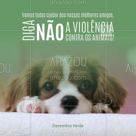 Vamos todos cuidar dos nossos melhores amigos, diga não a violência contra os animais! #ahazou #frasesmotivacionais #motivacionais #motivacional #ahazou