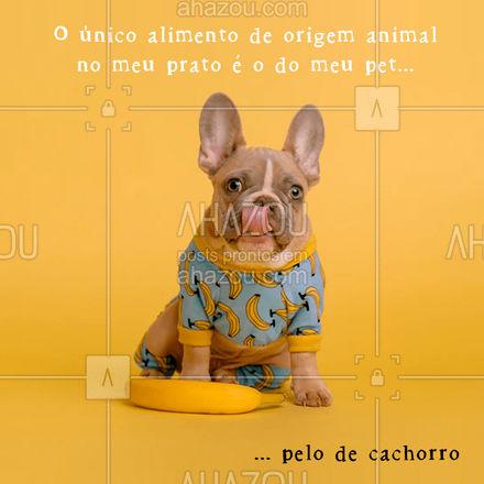 100% veg e 100% love pets! ? #AhazouPet  #dogsofinstagram #petlovers #cats #petsofinstagram #dogs #engracado #fun