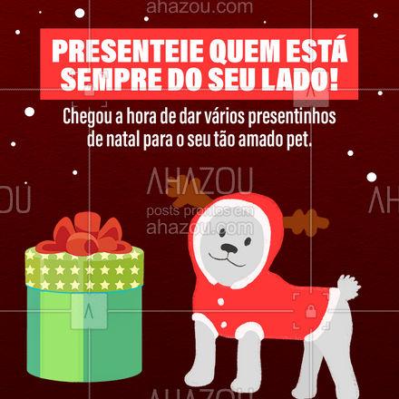 Venha conhecer os vários brinquedos para alegrar o dia a dia do seu cachorro ou gato neste fim de ano! O seu pet também merece um presente de natal. ?? #Natal #Presentes #ahznoel #AhazouPet #Brinquedos #AhazouPet