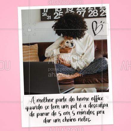 Felicia's fellings ? #PetseHomeOffice #AhazouPets #HomeOffice #Pets #LoucosporPets #AhazouPet