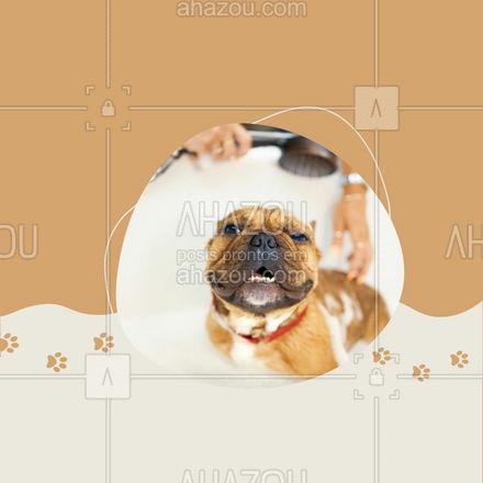 E aí, que tal aproveitar essa promoção animal! Traga seu pet para um delicioso banho e tosa! Entre em contato 📞 (inserir número) e agende um horário! #banhoetosa #tosahigiênica #petshop #AhazouPet #editaveisahz #banho #tosa #promoçao #descontos