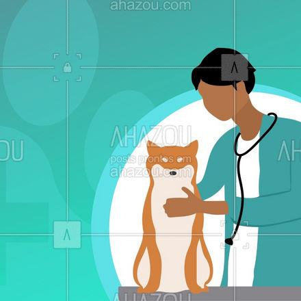 Sempre prezamos pela qualidade e o bom atendimento! Traga seu amiguinho!  #AhazouPet  #oncologiavet  #medvet #vetpet #medicinaveterinaria #veterinario #petvet #veterinaria
