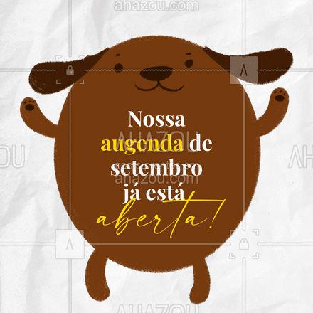 Reserve já um horário para seu pet?! Aproveite nossa agenda aberta de setembro! #serviços #pets #AhazouPet #petlovers #horarios #agendaaberta #agendaabertasetembro