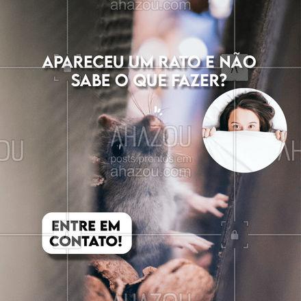 Os serviços de controle de praga são 24 horas! #AhazouServiços #controle #pragas #controledepragas