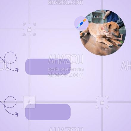 Seu animalzinho protegido com nossas vacinas! Não deixe de traze-lo! #AhazouPet  #medvet  #vetpet  #veterinario  #veterinarian #vacina