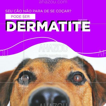 A dermatite canina pode ser classificada de acordo com suas causas, sendo elas a fúngica, bacteriana, alérgica ou atópica. Para mais informações entre em contato e marque uma consulta! #AhazouPet  #medicinaveterinaria #medvet #vetpet #veterinarian #veterinario #petvet #clinicaveterinaria #veterinary #vet #veterinaria