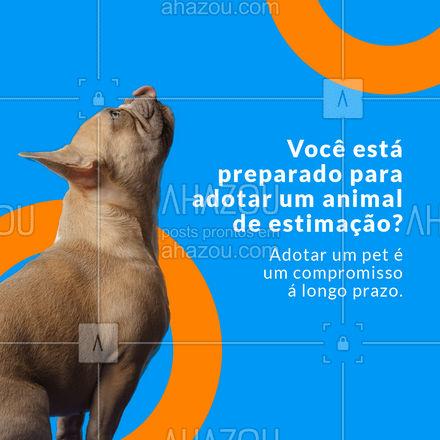 Não contribua com o comércio de animais, adote um bicho e descubra que amor não tem pedigree. ? #AhazouPet #adote #sejaresponsavel #pet  #ilovepets #cats #petoftheday #dogs