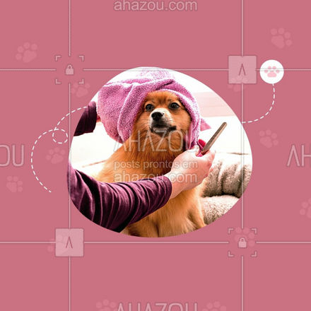 Seu pet sempre merece os melhores cuidados e seu bolso uma folga! Então aproveite essa promo e agende um horário! #banhoetosa #tosahigiênica #petshop #AhazouPet #editaveisahz #banho #tosa #promoçao #descontos