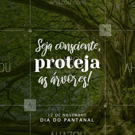 Preservando a integridade da natureza estamos garantindo a qualidade do ar e da vida humana no planeta ?? #ahazou #diadopantanal #preservaçao #arvores #natureza  #motivacional #vida