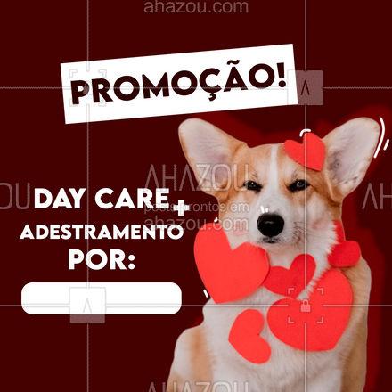 Além de se divertir muito seu pet também vai aprender a obedecer e vários comandos! Aproveite essa promo e agende um horário para seu amigo! #dogwalkersofinstagram #dogsitter #AhazouPet #petsitting #dogtraining #dogwalk #doglover #dogwalker #petsitter #dogdaycare #promoçao #descontos