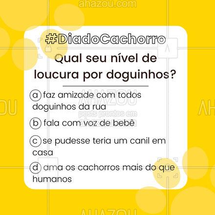 Nós escolhemos todas as opções 🤣 e vocês? 🐶🦴#motivacional #enquete #ahazou #diadocachorro #cachorro