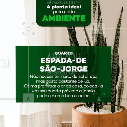 A Espada-de-São-Jorge é aquele tipo de planta que combina com qualquer lugar! Mas por suas habilidades de filtrar o ar e eliminar toxinas, é a escolha perfeita para decorar quartos. ?? #AhazouDecora #AhazouArquitetura  #homedecor  #decoracao #plantas