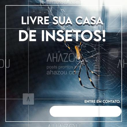 Marque seu serviço de desinsetização e melhore sua relação com a casa! #AhazouServiços #insetos #dedetizacao
