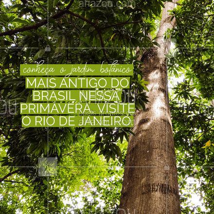Essa cidade maravilhosa fica ainda mais bonita na primavera. É importante conhecer o Jardim Botânico do Rio de Janeiro, é considerado o mais antigo do Brasil com mais de 200 anos de existência. É possível fazer caminhadas e entrar em contato com a natureza. #Primavera #AhazouTravel #Rio