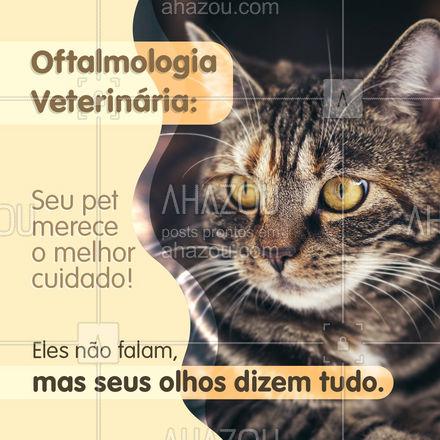 Cuide da saúde ocular do seu animal de estimação! Agende uma consulta: (xx) xxxx-xxxx #AhazouPet #medicinaveterinaria #veterinario #petvet #clinicaveterinaria #medvet #veterinary #saúdeocular #pets #oftalmologiaveterinária #animaldeestimação #AhazouPet