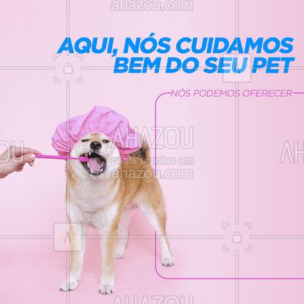Escolha o seu serviço favorito e traga o seu pet pra cá! ?  #petwalker #dogsitter #AhazouPet  #dogwalker #doglover #dogwalkerlife #petsitter