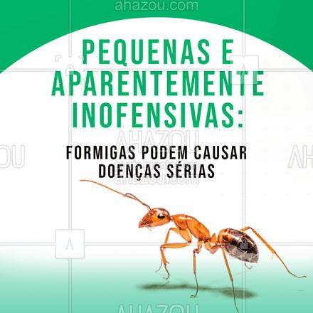 As formigas transportam protozoários, vírus, bactérias e fungos que podem causar doenças como a amebíase e giardíase. O sintoma mais marcante da amebíase é diarreia dolorosa com perda de sangue. Só no Brasil, há mais de duas mil espécies de formigas. Observou um fluxo de formigas na sua residência? Proteja-se, solicite o controle de pragas! #AhazouServiços #controledepragas #pragas #pragasurbanas #doenças #causas #amebiase #formigas #proteção