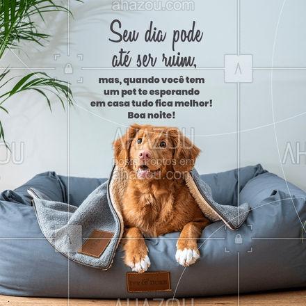 Não tem dia ruim que um lambeijinho não resolva! Tenham uma excelente noite! #cats #petlovers #petsofinstagram #ilovepets #AhazouPet #dogs #frasesdeboanoite #boanoite #AhazouPet