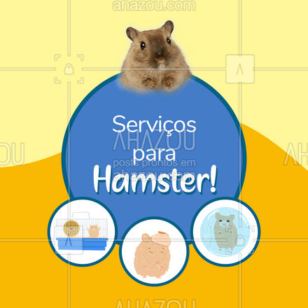 Aqui você encontra todos os serviços que o seu hamster precisa! Serviço e atendimento de qualidade é só aqui. Pode confiar!  #AhazouPet #hamster #servicos  #instapet  #petshop
