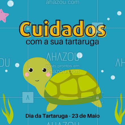 Lave suas mãos antes e depois de manusear a sua tartaruga, pois pode haver transmissão de doenças tanto dela quanto sua, a higienização evita que isso ocorra.? #Diadatartaruga #AhazouPet #dicas #veterinaria