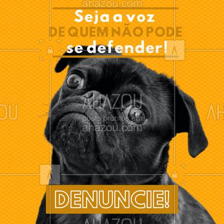Os animais não merecem e não devem ser maltratados! Denuncie!  #AhazouPet  #ilovepets #petlovers