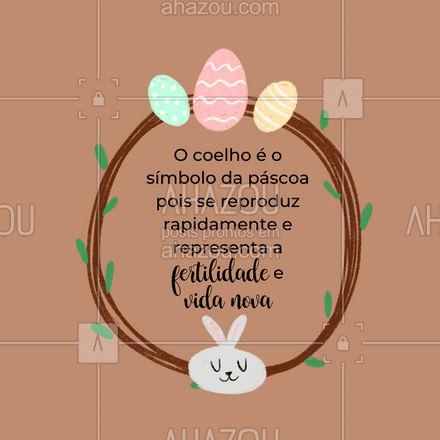 A Páscoa chegou! Por trás de uma época tão importante, separamos 4 fatos curiosos sobre a Páscoa! Confira! #carrosselahz #páscoa #curiosidades #fatos #interessante #coelhodapáscoa #símbolos #AhazouFé