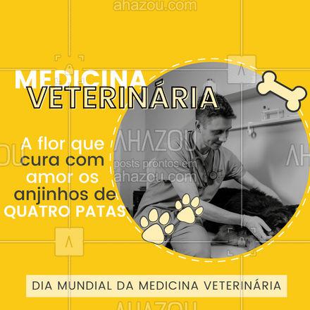 Não tem preço quando seu pet está ferido e encontra cuidado, amor e proteção nas mãos de um veterinário! #AhazouPet #veterinary #veterinarian #veterinaria #medicinaveterinaria #clinicaveterinaria #medvet #AhazouPet