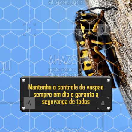 E quando a gente menos imagina lá estão elas, as vespas, rodeando o ambiente.? Por isso mantenha o seu controle de vespas sempre em dia. Entre em contato para solicitar o serviço: (inserir contato)?  #Vespeiro #Vespa #Dedetização #AhazouServiços #ServiçosparaCasa #ServiçosCorporativos #Dedetizador