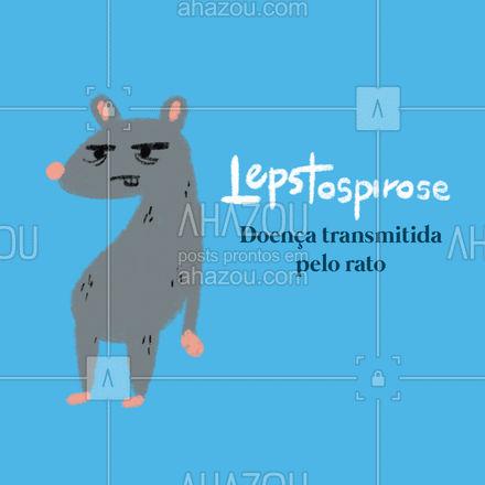 Lepstospirose é uma doença transmitida pelo rato. Seus sintomas são: febre alta, dor de cabeça, sangramento, dor muscular, calafrios, olhos vermelhos e vômitos. Essa doença pode ser evitada com uma desratização. #AhazouServiços #dicas #doenças #dedetizador #ratos #AhazouServiços #AhazouServiços