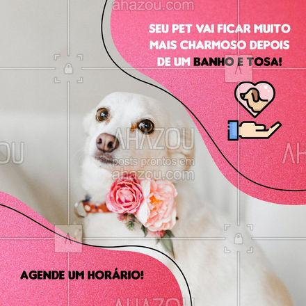Traga seu amigo para ficar ainda mais bonito e charmoso, com um incrível banho e tosa! Entre em contato 📞 (inserir número) e agende o seu horário! #banhoetosa #petshop #AhazouPet #banho #tosa #cachorro #gato #petlovers #tosahigiênica