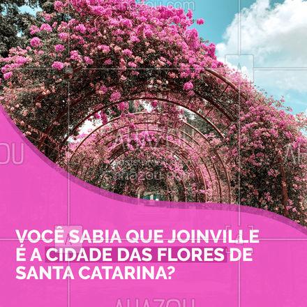 Uma boa dica de cidade para visitar nessa primavera é Joinville, a cidade das flores de SC. Você sabia que ela está entre os principais produtores de flores e plantas ornamentais de Santa Catarina? E na primavera temos o Concurso de Jardin, Concurso Menina Flor, Concurso de Rainha, Feira de Primavera e a Festa das Flores! Conheça locais de plantio, visite os jardins da cidade e aprecie as belezas locais. #Primavera #AhazouTravel #Joinville