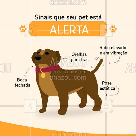 A linguagem corporal pode dizer muito sobre o estado de espirito do seu pet, saiba como decifra-las ? #pet #cachorro #AhazouPet #dogwalker #guia #dicas #inseguro