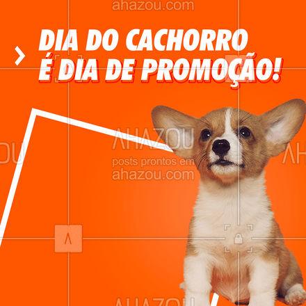 Hoje é dia do cachorro! E pra comemorar, aproveite a nossa promoção: xxxxxxxx #Cachorro #AhazouPet #Promoção