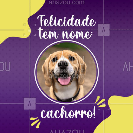 """Felicidade mesmo é ter um cachorro para te receber em festa quando você chega em casa, e te encher de """"lambeijos""""! #AhazouPet #frase #motivacional  #dogsofinstagram #petlovers #petsofinstagram #dogs"""