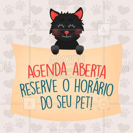 Estamos com saudade do seu melhor amigo! ? Agende agora um horário ? (inserir telefone) #agendaaberta #agenda #cats #dogs #ahazoupet #petsofinstagram #petlovers #ilovepets