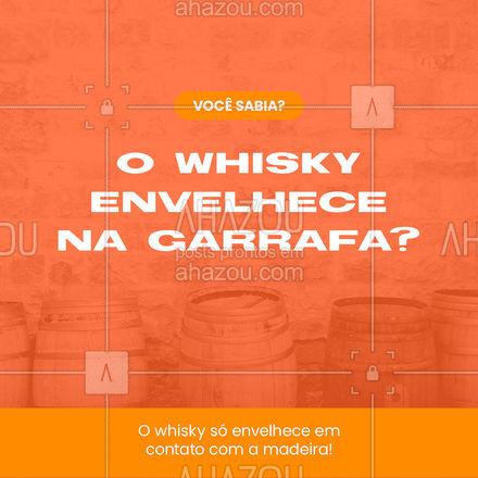 Você sabia dessa curiosidade sobre uma das bebidas preferidas dos brasileiros? #ahazoutaste #whisky #curiosidade #drinks #pub