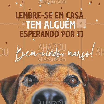 Não há motivação melhor que essa para chegar em casa mais rápido! #AhazouPet #março #bemvindo #pet#animais #motivacional