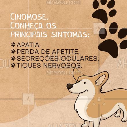 Se o seu cão está com estes sintomas, consulte um veterinário urgente!  #AhazouPet #cinomose #cuidados #pet #veterinario #clinicaveterinaria #vacina
