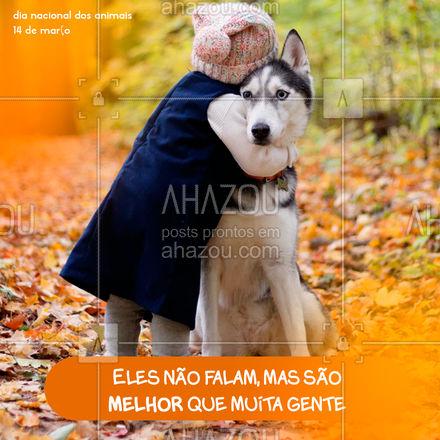 Prefiro eles do que gente chata! ?  #ahazou  #frasesmotivacionais #motivacionais #motivacional #amor #animais #diadosanimais #14demarco