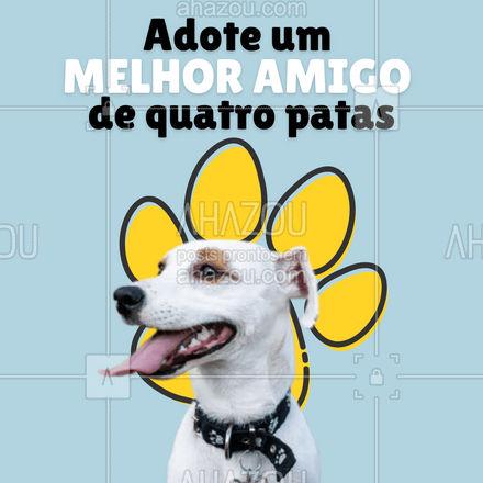 Venhas nos visitar e conhecer o seu novo leal amigo!?? #AhazouPet #adoção #cachorro  #ilovepets #dogs #petlovers