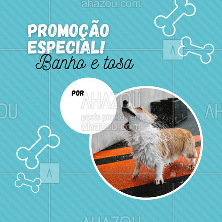 Venha deixar seu pet lindo cheiroso e tosadinho por um preço incrível! Aproveite a promoção e agende um horário! #banhoetosa #tosahigiênica #petshop #AhazouPet #editaveisahz #banho #tosa #promoçao #descontos #AhazouPet