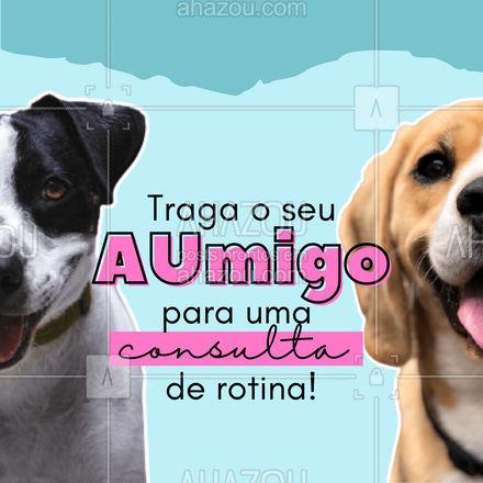 Você já levou o seu animalzinho para fazer uma consulta este ano? É importante sempre cuidar da saúde do seu aumigo e evitar problemas futuros ? #AhazouPet #veterinario #pet #aumigo #cachorro #dog #clinica #clinicaveterinaria  #petvet