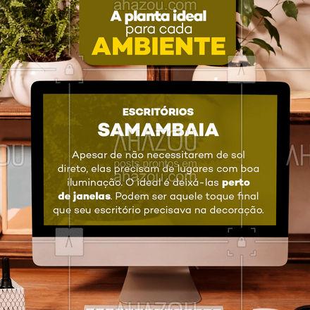 Pra quem trabalha de casa e ama plantinhas, segue essa dica pra deixar seu ambiente mais bonito! ??  #AhazouDecora, #AhazouArquitetura  #homedecor  #decoracao #plantas #escritório